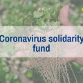 Coronavirus solidarity fund item.jpg